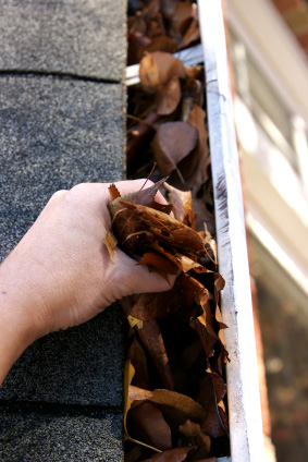 Gutter Guards and Leaf Protection